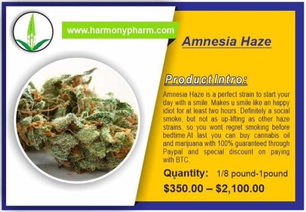 Buy Amnesia Haze