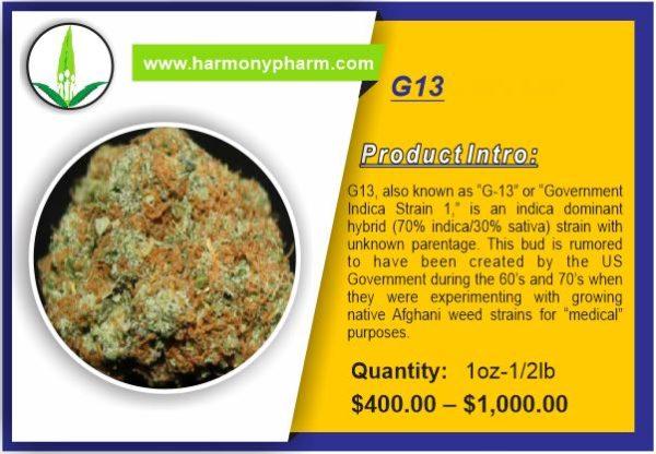 Buy G13