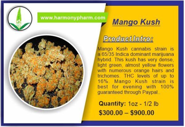 Buy Mango Kush