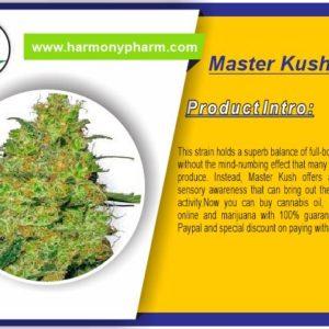 Master Kush