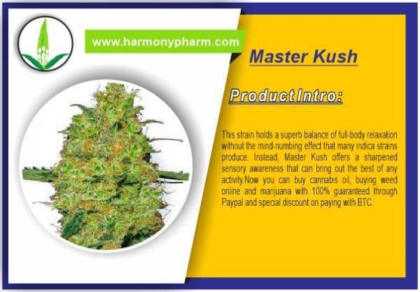 Buy Master Kush