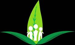 Buy Weed Online with Harmonypharm